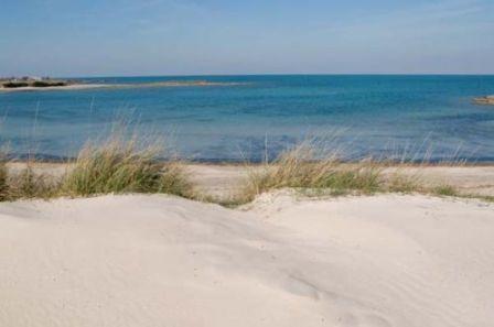 86_specchiolla-spiaggia.jpg