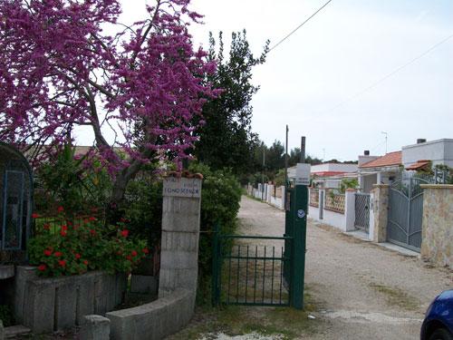110_villetta-maria-caterina_villetta_viale_ingresso.jpg