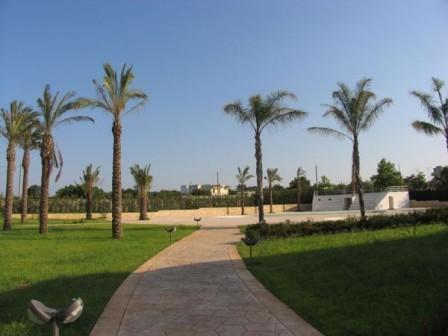 184_petraria-hotel-resort_anfiteatro.jpg