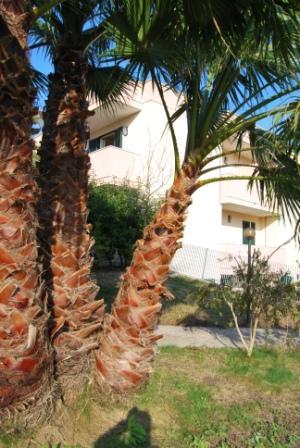1_residence-vaia_residence_vaia_giardino4.jpg