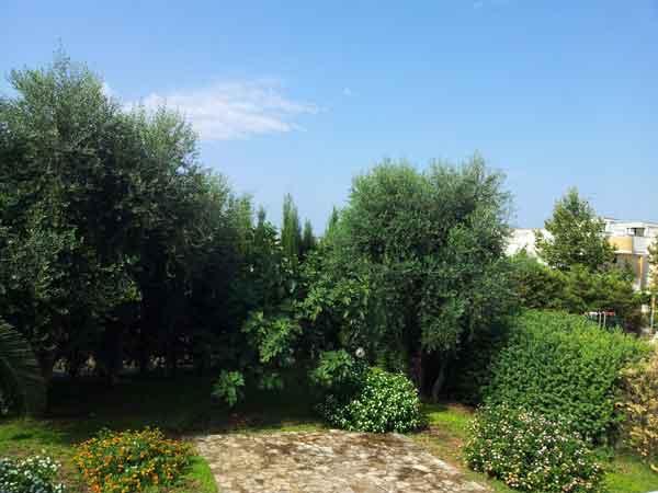 240_villetta-degli-ulivi-porto-cesareo_giardino_villetta_ulivi2.jpg
