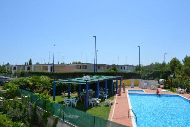 251_residence-junior-2_piscina.jpg
