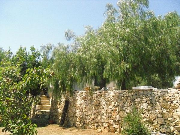 293_villetta-eden-porto-cesareo-sant-isidoro_giardino6.jpg