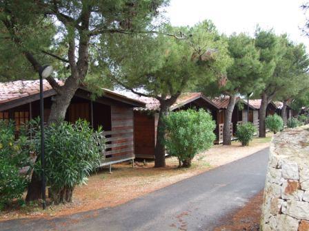 309_meditur-village--formula-chalet_villaggio_meditur_carovigno_vialetto.jpg