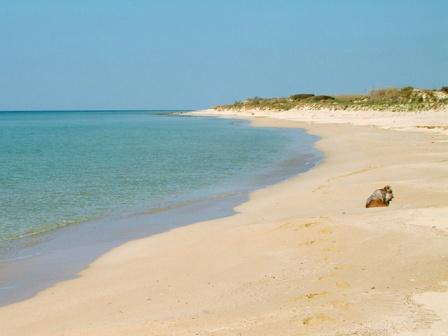364_hotel-luna-lido_spiaggia-marina-ugento.jpg