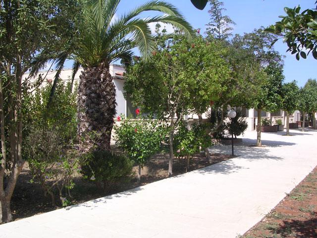 421_residence-a-frassanito-la-pineta-otranto_vialetti.jpg