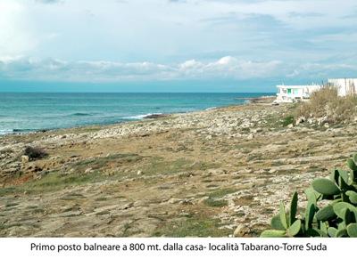 435_trullo-clara-tra-marina-di-mancaversa-e-torre-suda_scogliera-bassa.jpg