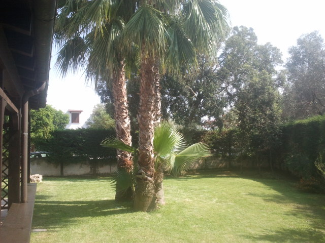 462_villetta-garden-village_giardino_piano_terra.jpg