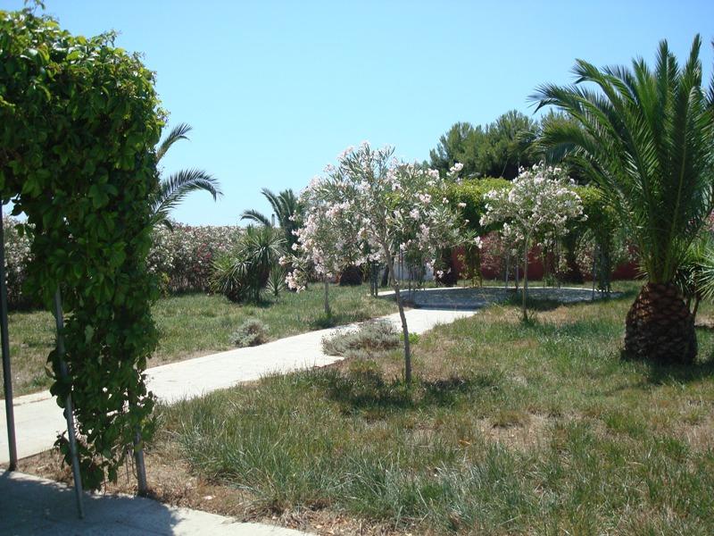 463_room-cafe-case-vacanza-porto-cesareo_giardino.jpg