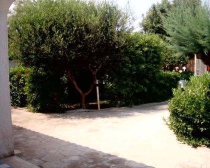 56_villetta-lido-delle-sirene_villetta_lido_delle_sirene_torre_lapillo_giardino_3.jpg
