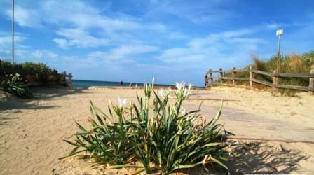 71_le-residenze-lorizzonte_residence_orizzonte_torre_vado_pescoluse_spiaggia.jpg
