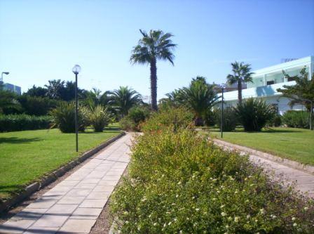 82_residence-club-la-baia-doro_baia_d_oro_torre_mozza_ugento_viali.jpg