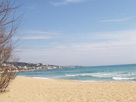 84_residence-miramare_residence_miramare_spiaggia.jpg
